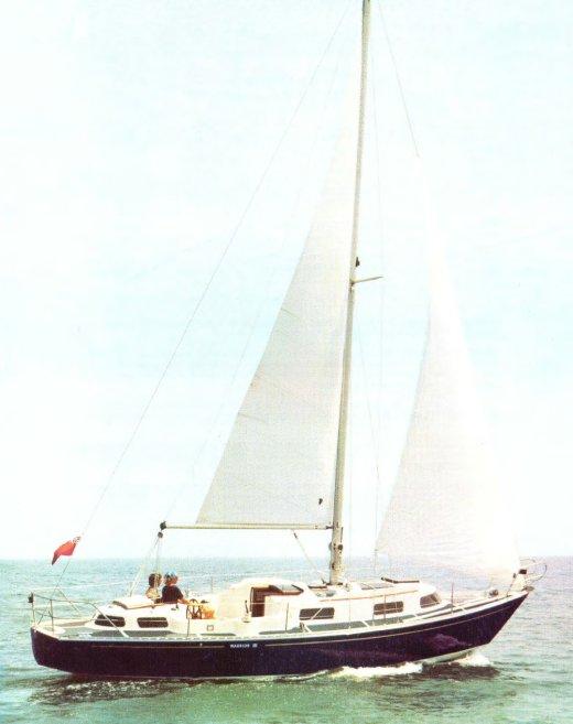 WARRIOR III (PRIMROSE) photo